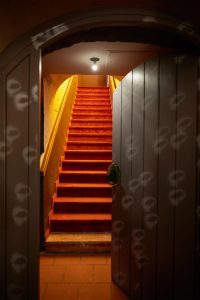 Polka Door
